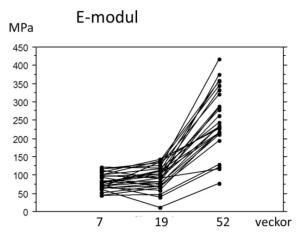 I humana hälsenerupturer verkar läkningen prioritera kvantitet före kvalitet: Det nytillkomna materialets styvhet (E-modul) ökar inte alls från 7 till 19 veckor efter skadan (patienter utan träning fram till vecka 7).